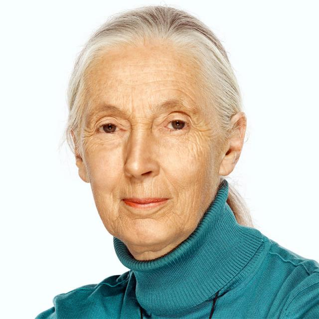 [Image of Jane Goodall]