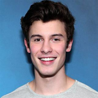 [Image of Shawn Mendes]