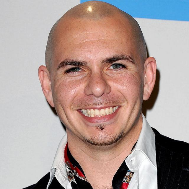 [Image of Pitbull]
