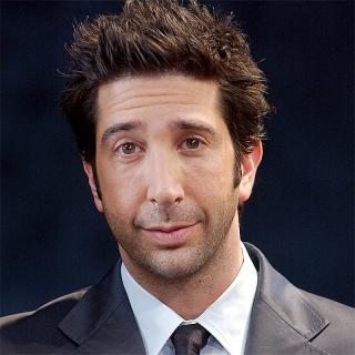 [Image of David Schwimmer]