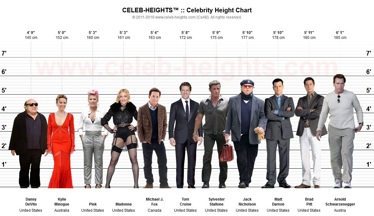 Tom Cruise on Height Chart