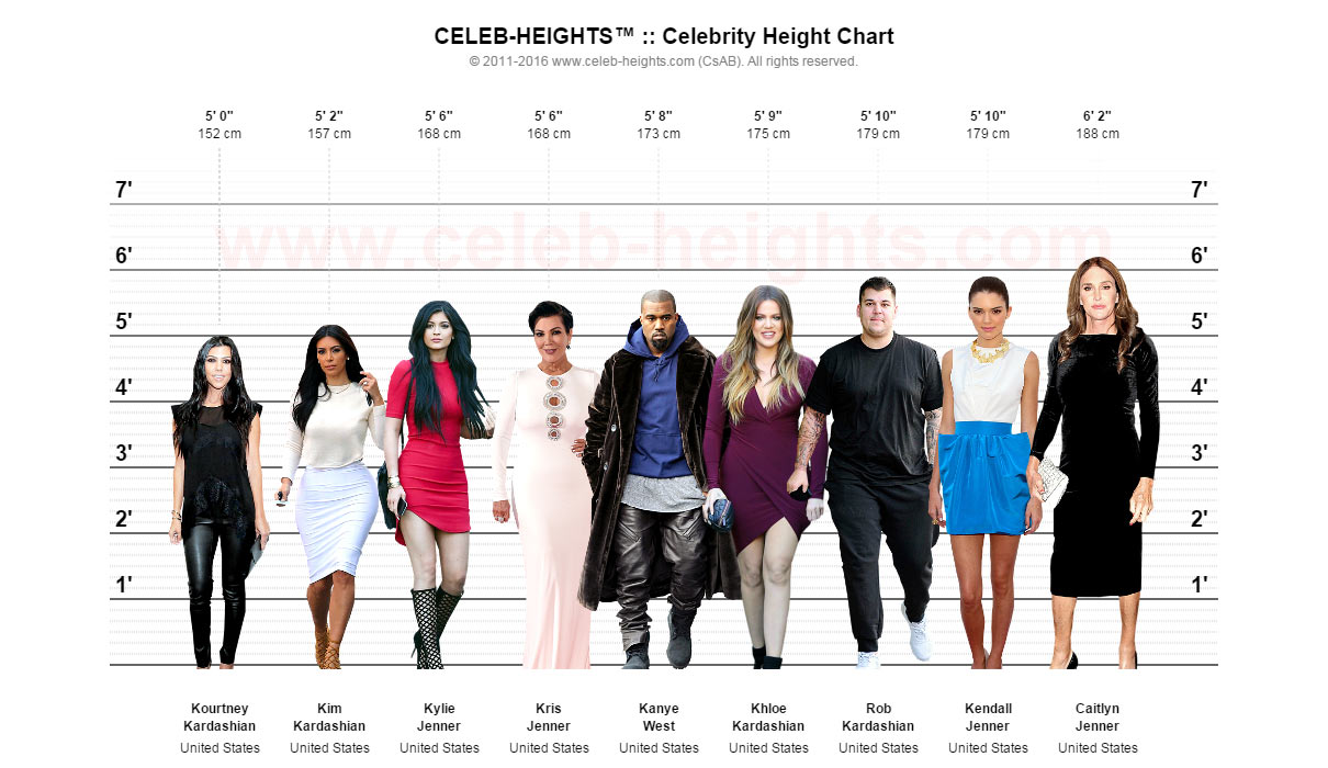 Celebrity Height Chart - Sample