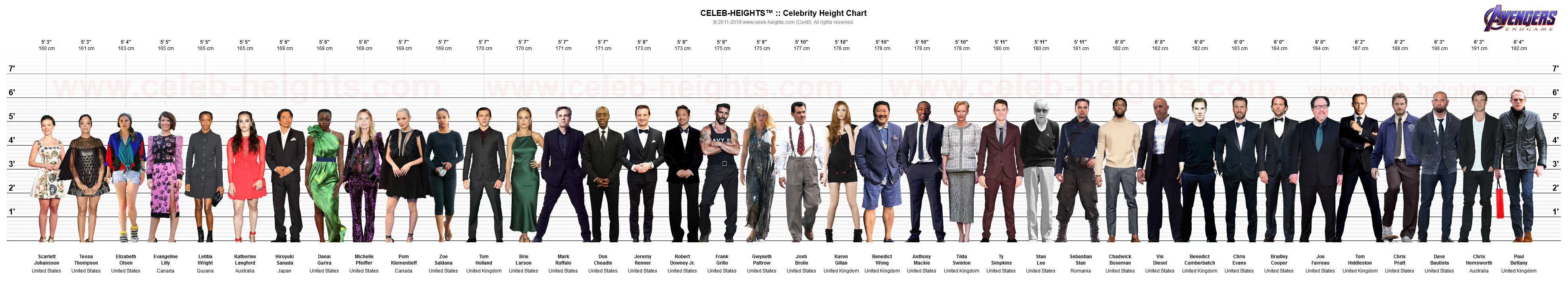 Paul Bettany on Height Chart